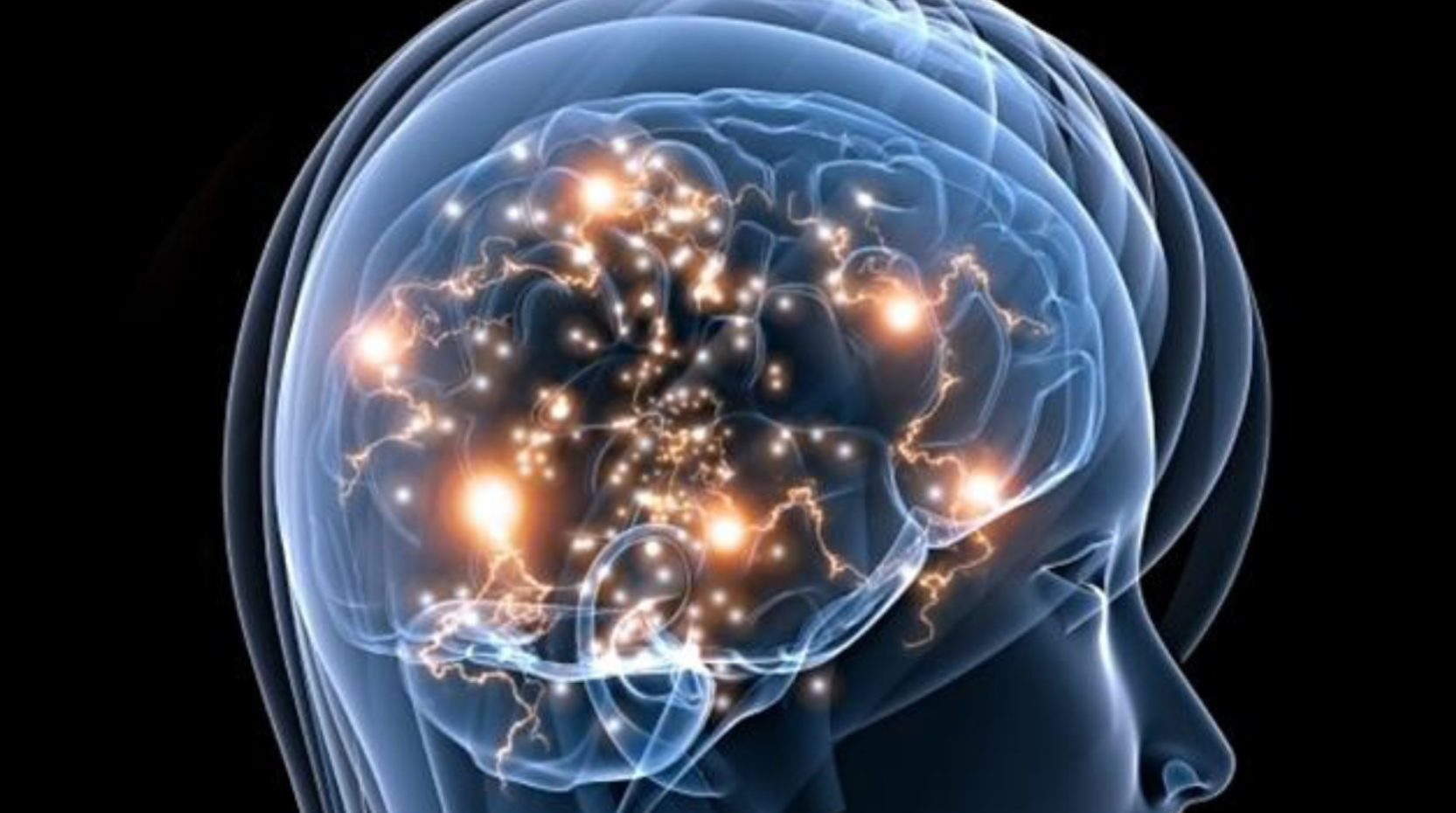 Comment notre cerveau influence notre personnalité